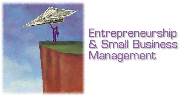 Image result for Entrepreneurship in small businesses